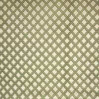 A4877 Avocado Fabric