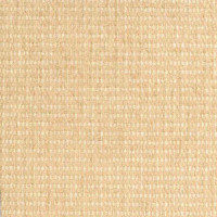 A5545 Eggshell Fabric
