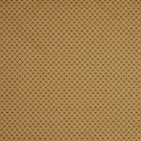 A6900 Sand Fabric