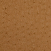 A7207 Butterscotch Fabric