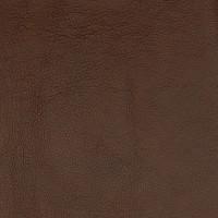 A7679 Pinto Fabric