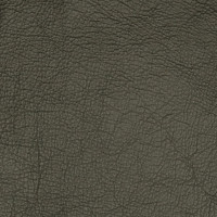 A7755 Smokey Pearl Fabric