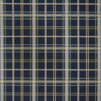 A8652 Nautical Fabric