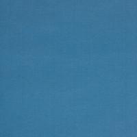 B1239 Caribbean Fabric