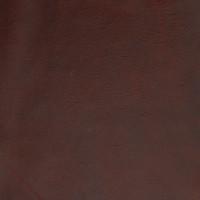 B1692 Latin Spice Fabric