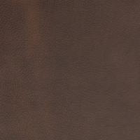 B1693 Caliginous Fabric