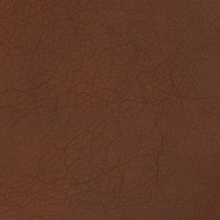 B1704 Tigers Eye Fabric