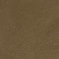 B1741 Loden Fabric