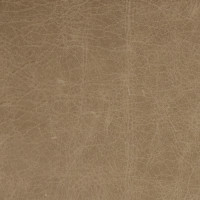 B1747 Oatmeal Fabric