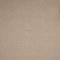 B2004 Latte Fabric
