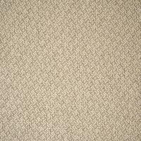 B2007 Tussah Fabric