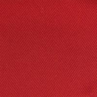 B2103 Firecracker Fabric