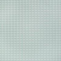B2167 Caribe Fabric