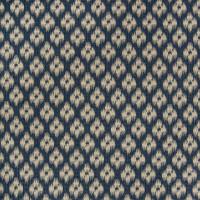 B2264 Indigo Fabric