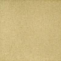 B2409 Citron Fabric