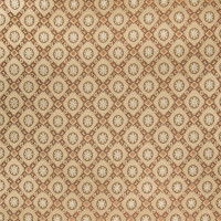 B2552 Ginger Fabric