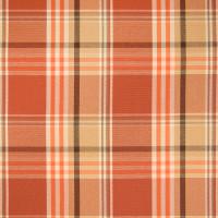 B2612 Pumpkin Fabric