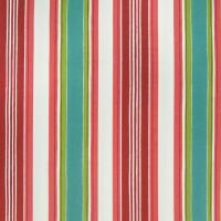 B2619 Watermelon Fabric