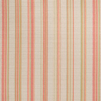 B2782 Watermelon Fabric
