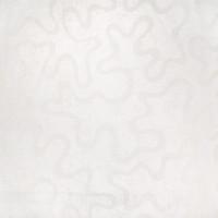 B2937 Lace Fabric