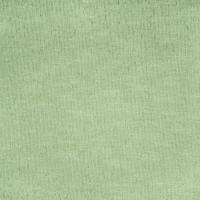 B2978 Palm Fabric