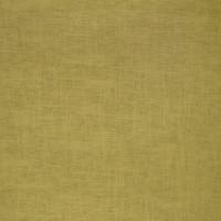 B3034 Pear Fabric