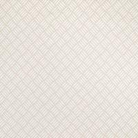 B3081 Neutral Fabric