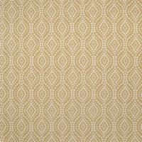 B3091 Marigold Fabric
