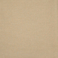 B3119 Linen Fabric