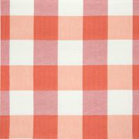 B3194 Firecracker Fabric