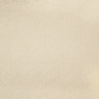 B3232 Desert Fabric