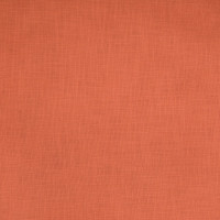 B3396 Salmon Fabric