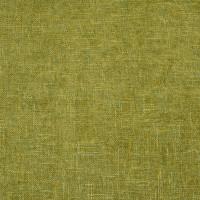 B3822 Fern Fabric