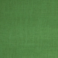 B4019 Kelly Green Fabric