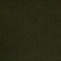 B4221 Evergreen Fabric