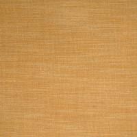 B4233 Honey Fabric