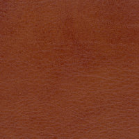 B4256 Allegro Old Whiskey Fabric