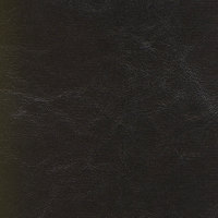 B4282 Islander Ebony Fabric