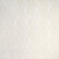 B4553 Cream Fabric