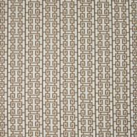 B4578 Ginger Fabric