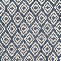 B4971 Indigo Fabric