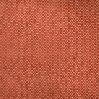 B5002 Spice Fabric