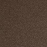 B5104 Rawhide Fabric