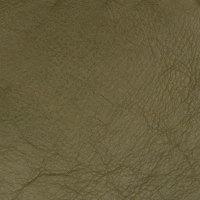 B5169 Shamrock Fabric