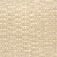 B5658 Sunshine Fabric