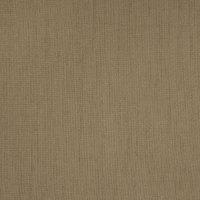 B5882 Fawn Fabric