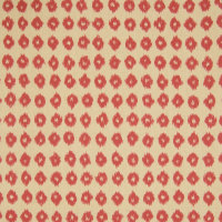 B6054 Persimmon Fabric