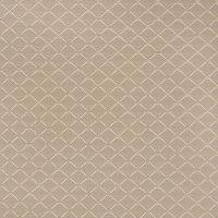 B6467 Mushroom Fabric