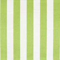 B6879 Lime Fabric