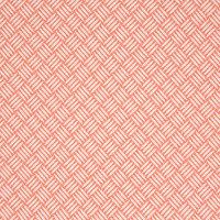 B7279 Mandarin Fabric